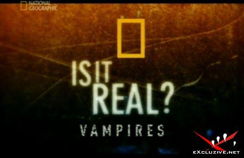 Вампиры: Реальность или фантастика? / Vampires: Is It Real? / 2006 / SATRip