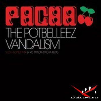 VA - Pacha 2008 - 3CD (2008)