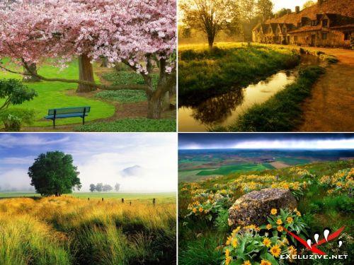 Webshots Wallpapers: Избранное. Пейзажи