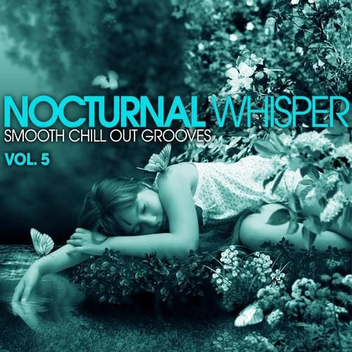 VA - Nocturnal Whisper - Smooth Chill Out Grooves Vol 5 (2013)