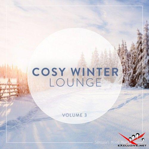 VA - Cosy Winter Lounge Vol.3 (2017)