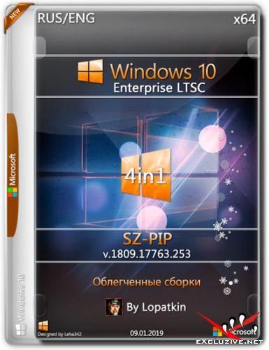 Windows 10 Enterprise LTSC x64 1809.17763.253 PIP-SZ (RUS/ENG/2019)