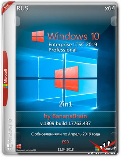 Windows 10 Pro/LTSC 2in1 x64 v.1809.17763.437 by BananaBrain (RUS/2019)